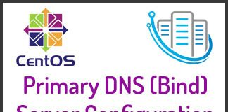 Primary DNS
